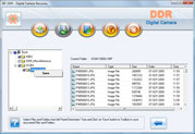 Digital Camera Files Recovery